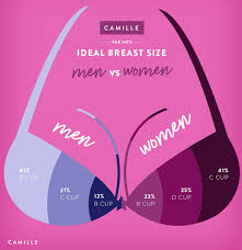 Average Breast Size Chart Age Best Breast Size Revealed Uk Men Prefer This Cup Size And