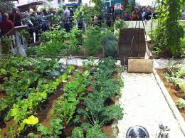 Small Picture 1327 best Vegetable Gardening images on Pinterest Vegetable
