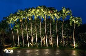 tropical outdoor lighting. Outdoor Tropical Lighting Exterior .