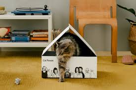 Backed by Harry's Labs, <b>Cat Person</b> launches its lineup of cat care ...