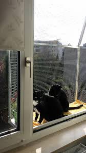 Kundenmeinung Zum Katzenbalkon Von Katzennetze Nrw Katzennetze