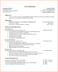 5 Good Examples Of College Resumes Budget Template Letter