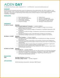 Gallery Of Excellent Resume Example