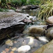 Small Picture The Rainforest Garden How to Design a Dry Creek Bed 10 Tips