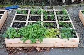 greenes raised beds raised garden beds cedar review greenes raised garden bed review greenes raised gardens