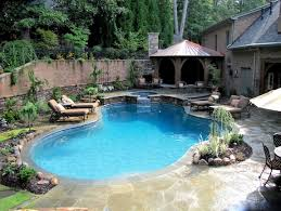 Backyard Pool Designs Classy Atlanta Pool Builder Custom Pool Design Design Choices