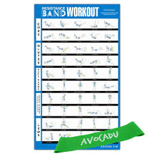 Stretch Band Loops Exercise Chart Avocadu Resistance Band Workout Poster With Loop Resistance Band Included Premium 16 X 24 Poster With Illustrated Workout Moves For Easy Home