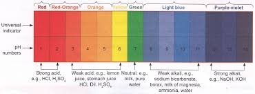 Red Cabbage Juice Indicator Chart What Is The Definition Of Indicator In Chemistry A Plus Topper