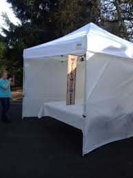 Craft Show 10x10 Canopy with Walls and Weight Bags Package