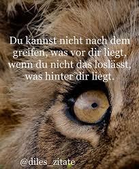 Sprüche Zitate Poet Löwe Löwin Liebe Vermissen Leben Allein Verletzt