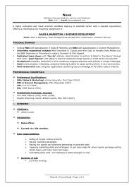 New Resume Format For Freshers Resume Cool New Professional Resume