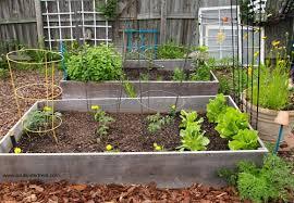backyard gardening. Is Growing Your Own Backyard Garden Worth It?- Gardening A Great Way To L