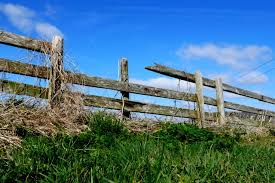 good fences makes good neighbours essay robert frost s proverb  good fences makes good neighbours essay