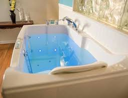 best bathtubs top premier care blue spring rated walk in bathtub review and with 10 for