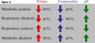 Respiratory Metabolic Acidosis Alkalosis Chart 50 Clean Respiratory Acidosis Chart