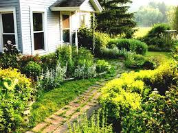 Small Picture Astonishing Garden Ideas Nz Small Front Garden Design Ideas Nz