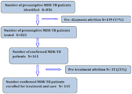 Flow Chart Showing Pre Diagnosis And Pre Treatment Attrition