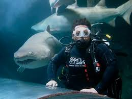 position available shark dive xtreme dive instructor join our enthusiastic team at shark dive xtreme the best job in manly
