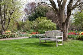 No More Mowing 10 GrassFree Alternatives To A Traditional Lawn Lawn Free Backyard