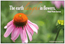 Flowers Quotes Extraordinary Flower Garden Quotes Top48videosentertainment Club Garden Your