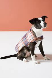 Pet Porter Size Chart Porter Plaid Dog Coat Pho Dog Graphy Dog Coats Dog