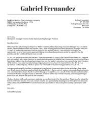 How To Do A Professional Cover Letter Professional Cover Letter Examples Papelerasbenito