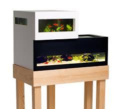 fish tank stand design ideas office aquarium. A Modern Swedish Fish Tank By Karl-Oskar Ankarberg. Stand Design Ideas Office Aquarium