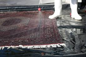 while we are proud of being a local company that provides a fantastic area rug cleaning service we want everyone to know that we do provide in home