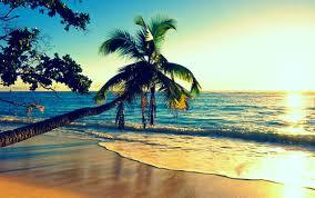 summer beach tumblr photography. Interesting Beach Beach Hot Ocean Paradise Photography Summer Water Waves In Summer Beach Tumblr Photography T
