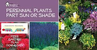 perennial garden plans zone 5 full sun