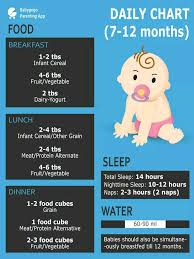 Need A Diet Chart For My 11 Month Old Baby Also Currently