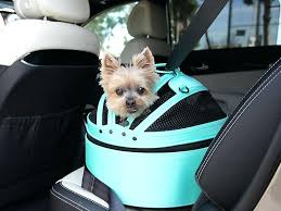 car seats dog seat in car the best cars for dogs desirable features continued back