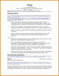 Examples Of Professional Summary | Musiccityspiritsandcocktail.com