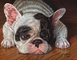 11x14 french bulldog nocr jpg 89406 bytes
