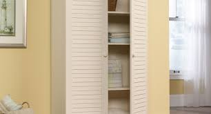 Cabinet : Awful Tall Storage Cabinet With Doors Wood Prominent ...