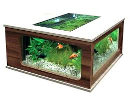 aquarium coffee table fish tank round aquarium coffee table fish coffee table best coffee table aquarium