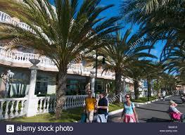 Hotel De Las Americas Cleopatra Hotel Playa De Las Americas Tenerife Canary Islands