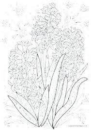 Spring Coloring Pages For Adults Coloring Book Fun Acessorizame