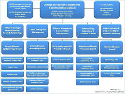 Cdc Organizational Chart Apple Google Microsoft Organizational Chart Www