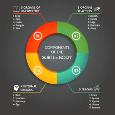Body Mind Intellect Chart 7 1 The 3 Bodies