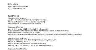 Land Surveyor Sample Resume Format In Word Free Download