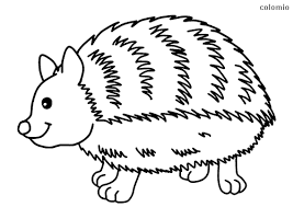 More than 600 million dogs and cats in the world warm human houses the cozy purrings and tender looks. Animals Coloring Pages Free Printable Animals Coloring Sheets