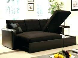 best sleeper sofas for small spaces. Plain Sofas Sleeper Loveseats For Small Spaces Best Sofa  Sofas Apartment Therapy Loveseat  In B