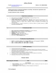 Business Intelligence Sample Resume Bi Business Intelligenceloper Job Description Template Bo 17