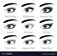 eye makeup types infographic vector image