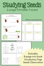 Studying Seeds Printable Mini Book Seed Chart And