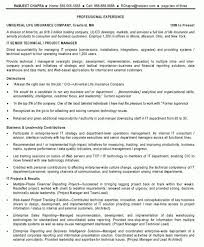 Technical Program Manager Resume It Senior Technical Project Manager