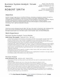 Agile Business Analyst Resumes Sap Analyst Resume Trezvost