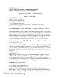 Sample Insurance Executive Resume Insurance Manager Resume Sample