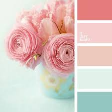 pastel paint colors101 best Color Combination  Inspiration and Ideas images on